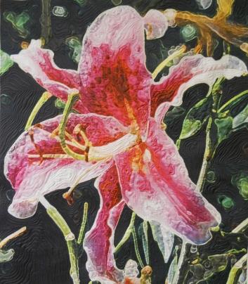 Barbara's Star Lily